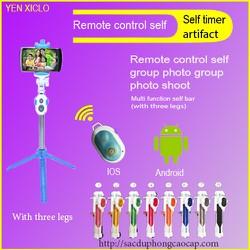 Gậy chụp hình Bluetooth kèm remote WXY-01