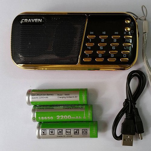 Loa nghe nhạc usb, thẻ nhớ, FM Craven CR-853