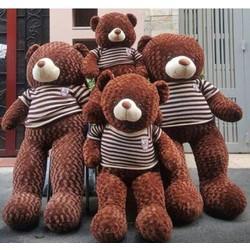 [ Hàng xịn Giá tốt] gấu Teddy 1m8