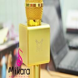 Mic karaoke bluetooth cao cấp nhất hiện nay