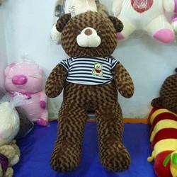 Gấu nhồi bông Teddy Áo 1.2m