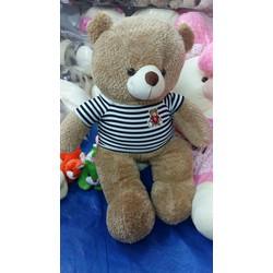 Gấu Teddy Bắp nhồi bông