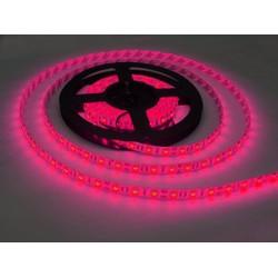 Led cuộn dây dán 5m mắt 5050 hồng điện 12V