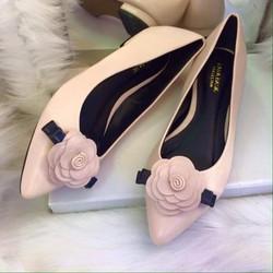 Giày bệt Zaza Basic