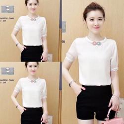 Sét áo viền bông +Quần sort đơn giản cute - SETKN868