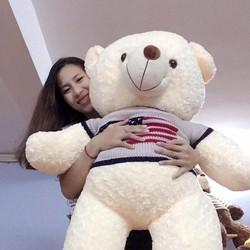 Gấu bông Teddy 1m2 - Gấu teddy áo len