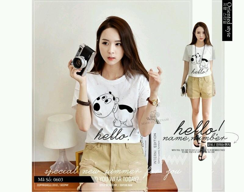 Áo thun nữ cotton  PY-AT8 1