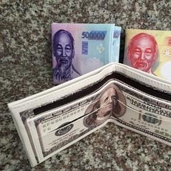 VÍ NAM IN HÌNH 100 USD và 500k CÓ NHIỀU NGĂN