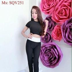 Sét áo cổ tròn form ôm phối quần baggy sành điệu thời trang SQV251