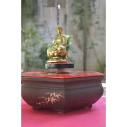 Tượng Phật dược sư bay lơ lửng