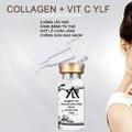 Serum Collagen+ vitC YLF tế bào gốc nhau thai cừu