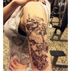 Xăm Dán Tattoo Hình Quỹ