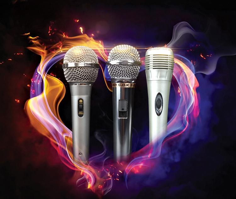 Microphone dây C.O.K E-701 Bạc 1
