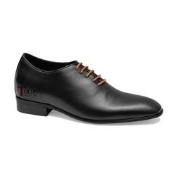 giày cao nam Toldo