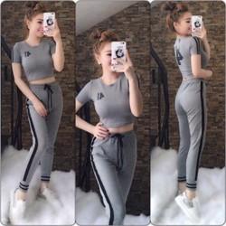 áo crop + quần dài