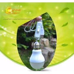 Bóng đèn Led 5W cắm USB dây dài 1.5m có công tắc