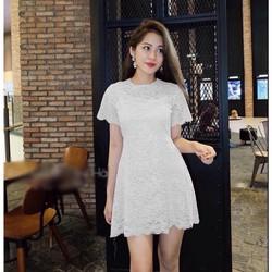 Đầm ren xòe nhẹ cực đẹp đẳng cấp Rosie Dress