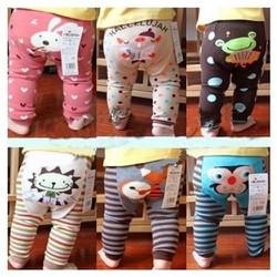 Set 3 quần len mông thú