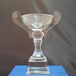Cúp pha lê thể thao vô địch