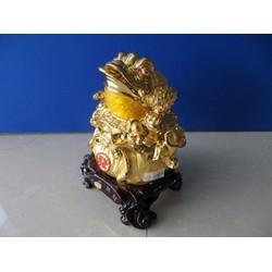 Cóc Thiềm thừ si vàng nhỡ 51135 - Linh vật phong thủy