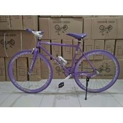 xe đạp FIXED GERA CÓ BÌNH NƯỚC