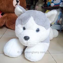 Chó bông Husky 60cm