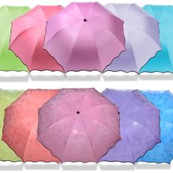 ô dù nở hoa khi gặp trời mưa