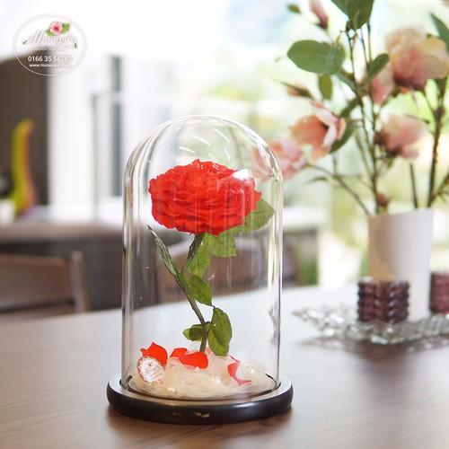 Hoa hồng bất tử Dekai - 10459608 , 7307696 , 15_7307696 , 1400000 , Hoa-hong-bat-tu-Dekai-15_7307696 , sendo.vn , Hoa hồng bất tử Dekai