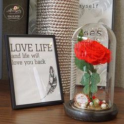 Hoa hồng bất tử Fuwa