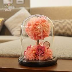 Hoa hồng bất tử Mirin
