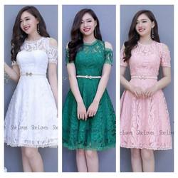 Đầm Dự Tiệc Ren Hoa Hot - 2446