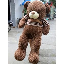 GẤU BÔNG BỰ TEDDY 1M4