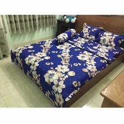 drap giường cotton - ga giường