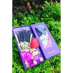 Quà tặng giáng sinh Noel độc đáo, Hộp hoa Lavender