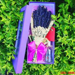 Quà tặng Giáng sinh độc đáo, Hộp hoa Lavender