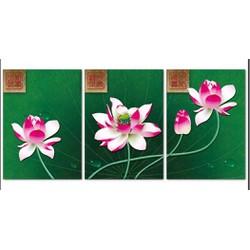Tranh chữ thập Hoa sen 3 bức