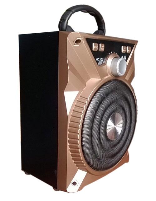 -freeship- Loa Karaoke Bluetooth P88-P89 Tặng Kèm Micro 13