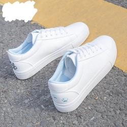Giày thể thao nữ thời trang Hàn Quốc