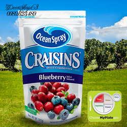 Quả Nam việt quất và nước ép Blueberry sấy khô nhập khẩu Mỹ 142g