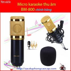 Micro Karaoke Thu Âm BM-800