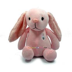 Thỏ tai dài hồng nhỏ