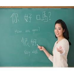 Khóa Học Tiếng Trung Dành Cho Người Mới Bắt Đầu Tại Trung Tâm Tiếng Trung Thành Công