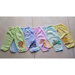quần dài thun cotton hiệu carte s 5 quần