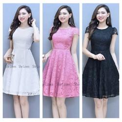 Đầm Dự Tiệc Ren Hoa Hot Sale Giá Sốc