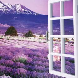 Decal Cửa Sổ Hoa Lavender