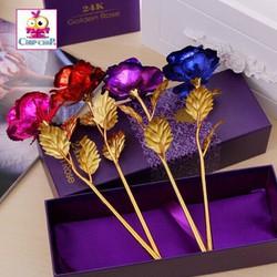 hoa hồng dành cho cho các ngay lể đây