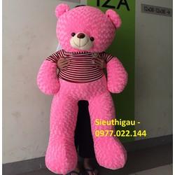 Gấu Teddy m6 - Gấu bông Teddy khổ 1m6 giá rẻ - Màu Hồng - Hm6