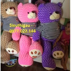 Gấu Teddy m6 - Gấu bông Teddy khổ 1m6 giá rẻ - Màu Tím - Tm6