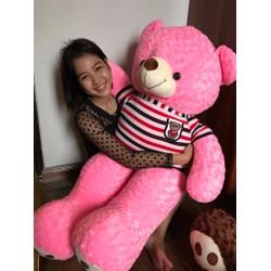 Gấu Teddy m4 - Gấu bông Teddy 1m4 siêu đẹp - Màu Hồng - Hm4