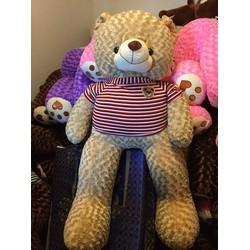 Gấu Teddy m4 - Gấu bông Teddy 1m4 rẻ đẹp - Cafe sữa